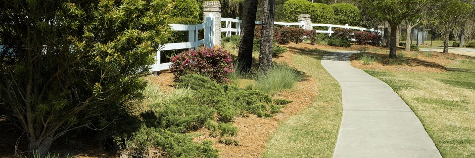 We provide landscaping services since 1978